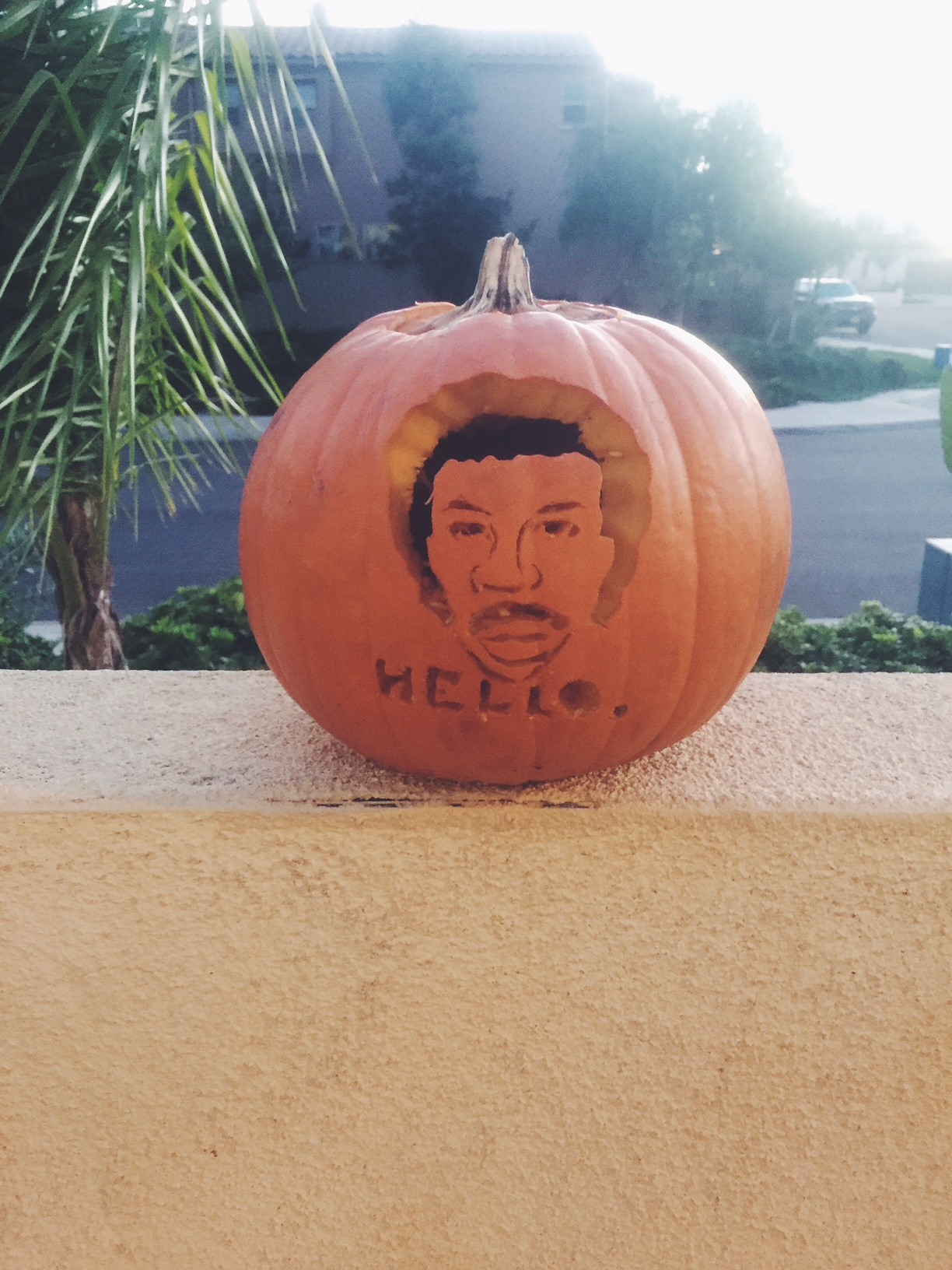 Lionel Richie Pumpkin - The February Fox